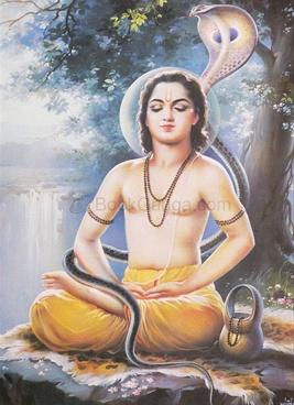 Sarth Shrieknathi Bhagvat