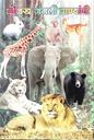 ओळख जंगली प्राण्यांची