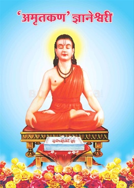 Best Mauli Shri Sant Dnyaneshwar Maharaj Walls Gallery for free download