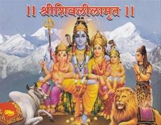 Shrishivlilamrut (Motha)
