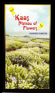 Kaas Plateau Of Flowers