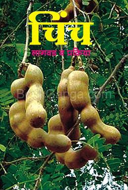 Chinch Lagvad Va Prakriya