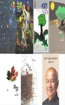 Utsav Natyancha Shabd ruchi Ruturang 2017 Sanch ( Brown Colour )