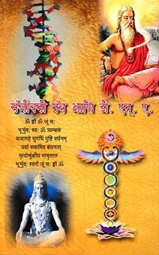 Sanjeevani Mantra Ani DNA