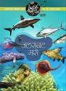 आपली सृष्टी मालिका : जलसम्राट मासे