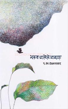 Bharun Alele Akash