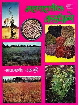 Maharashtratil Kaddhanya