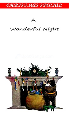 A Wonderful Night