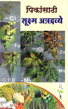 Pikansathi Sukshama Anndravye