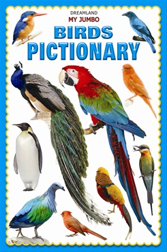 My Jumbo Birds Pictionary