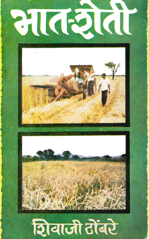 भात - शेती