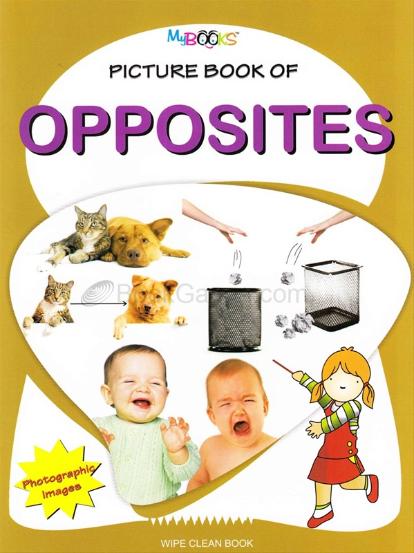 Picture Book Of Opposites