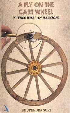 A Fly On The Cart Wheel