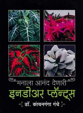 Manala Anand Denari Indoor Plants