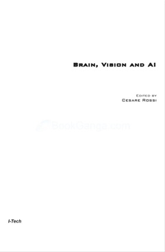 Brain, Vision and AI