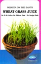 Panacea On The Earth Wheat Grass Juice