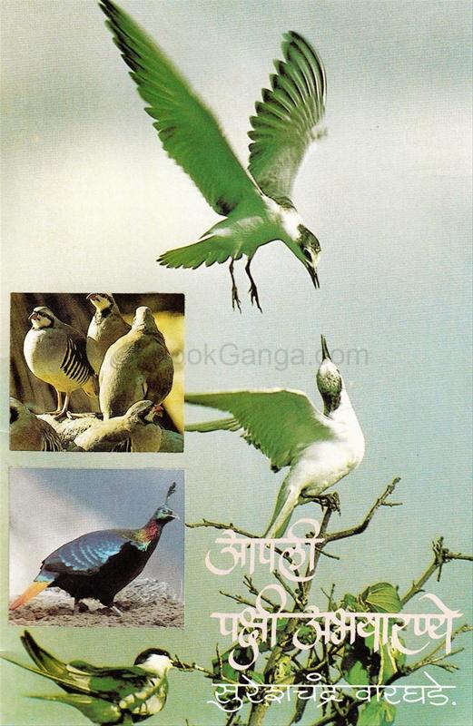 आपली पक्षी अभयारण्ये