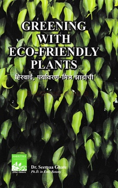 Greening With Eco - Friendly Plants