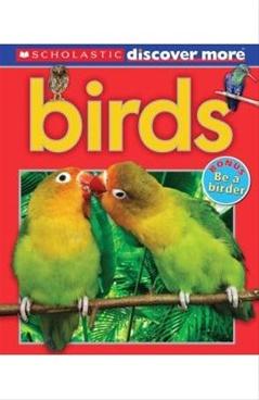 Discover More : Birds