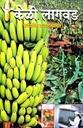 केळी लागवड पारंपारिक व उतीसंवर्धित