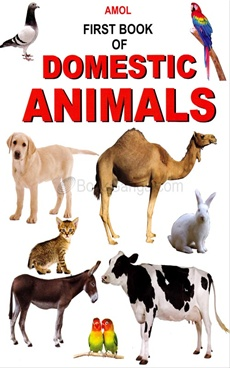 First Book Of Domestic Animals