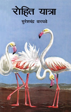 Rohit Yatra