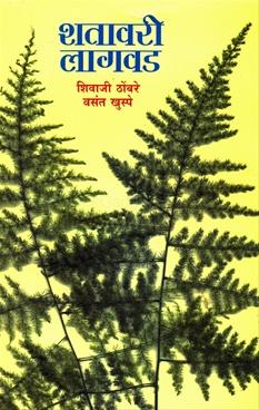Shatavari Lagwad