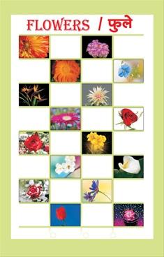 Flowers/ Phule