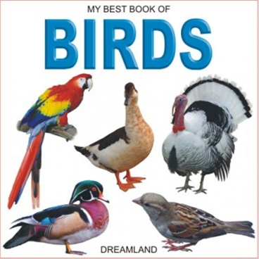 My Best Book Of Birds