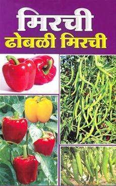 Mirchi Dhobli Mirchi