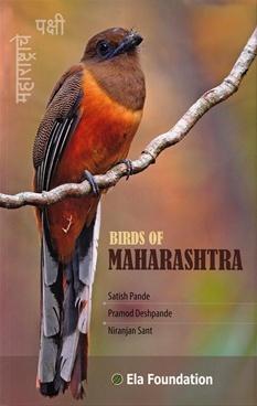 Birds Of Maharashtra